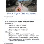 Obert el termini d'inscripció per a la contractació de 5 peons per la brigada forestal