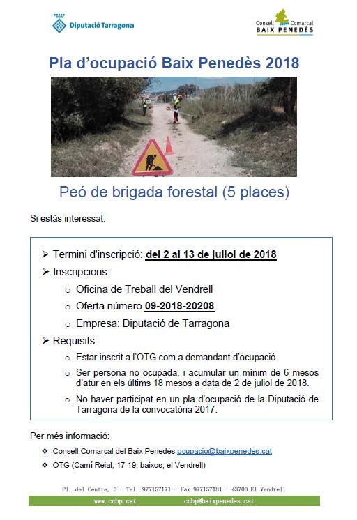 You are currently viewing Obert el termini d'inscripció per a la contractació de 5 peons per la brigada forestal