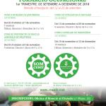 Obert el període d'inscripció dels cursos de formació del SOM fins el25 de setembre